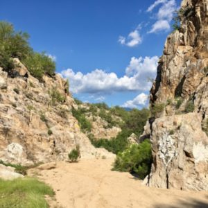 Tucson area hikes in Honey Bee Canyon