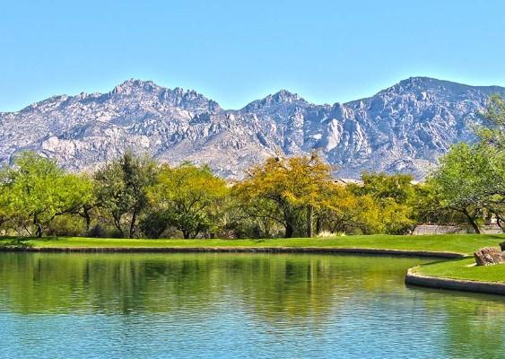 Rancho Vistoso in Oro Valley, AZ